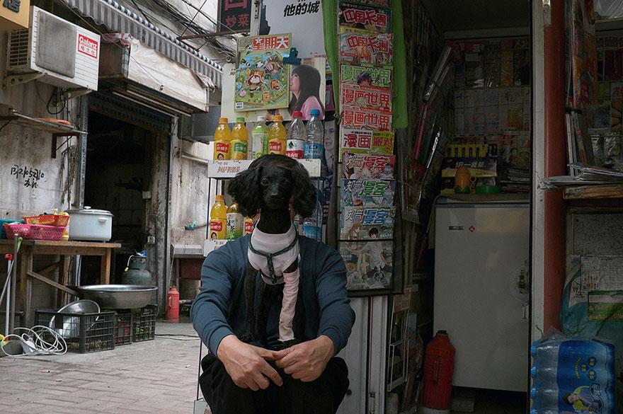Dog рис 2