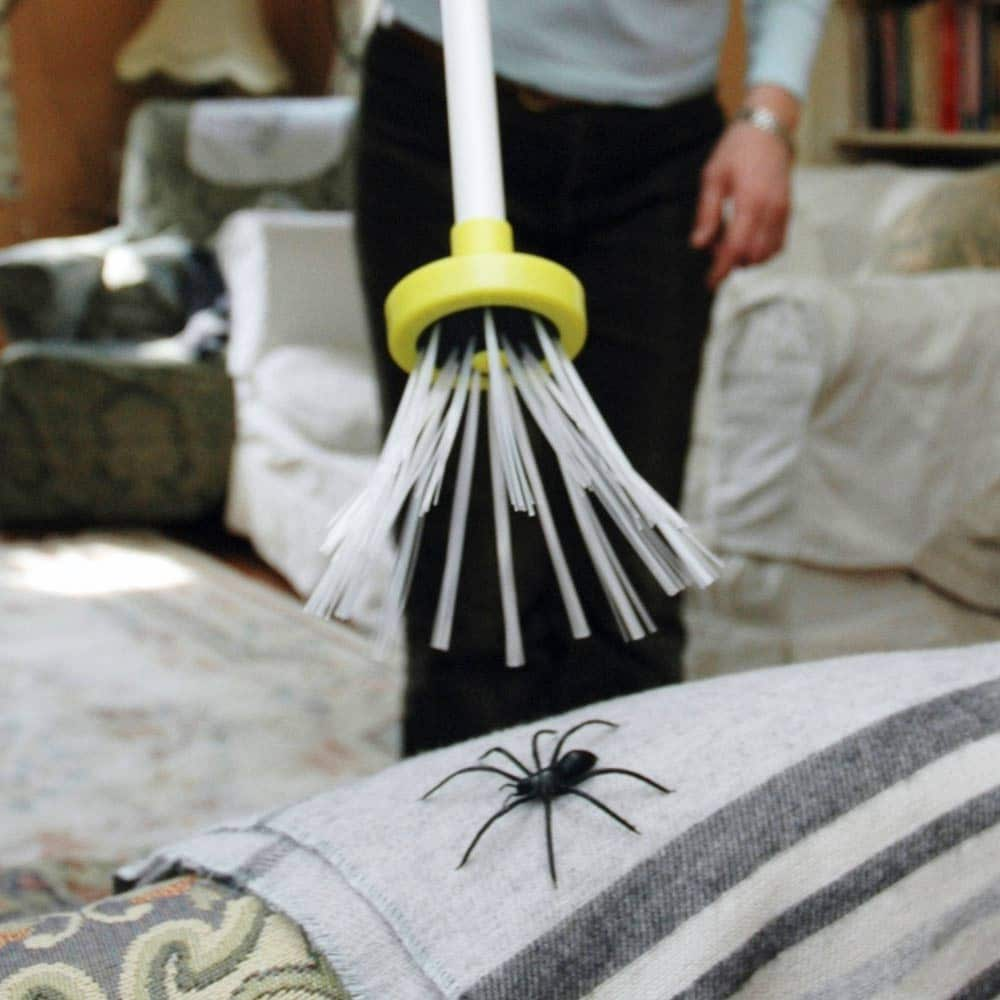 spider_catcher
