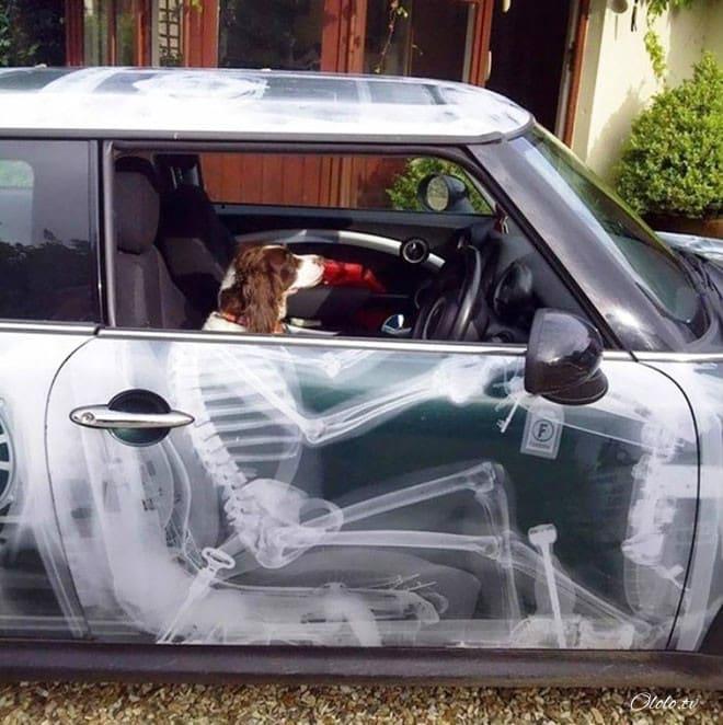 20 творческих автолюбителей, которые дополнили своё авто забавным креативом
