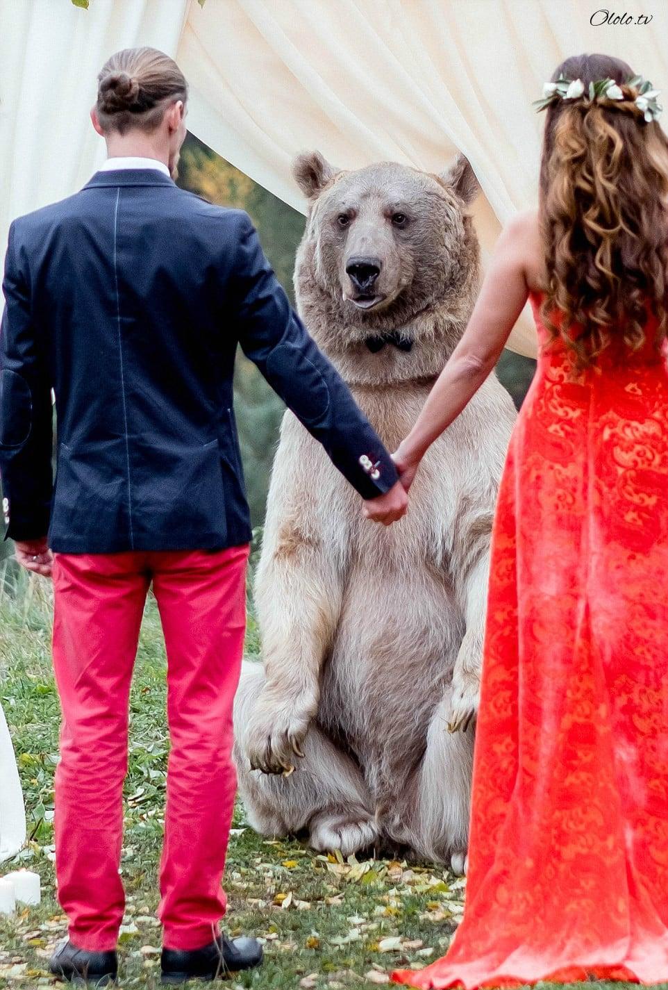 Свадьба по-русски: медведь благословляет жениха и невесту