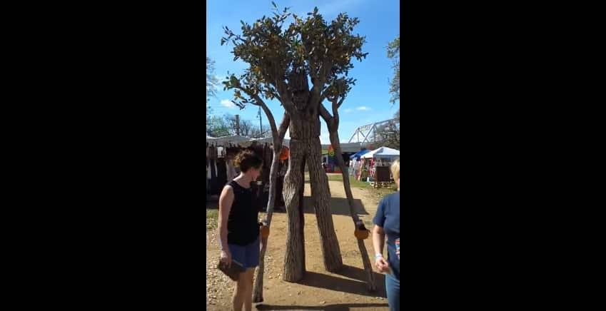 Мужчина соорудил себе крутой костюм дерева для фестиваля и стал похож на энта из «Властелина колец»!