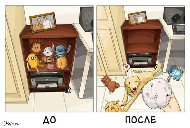 Ваша жизнь до и после появления собаки в картинках