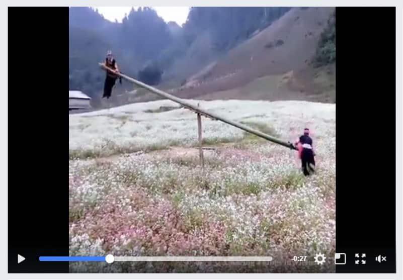 Необычные вьетнамские качели. Видео