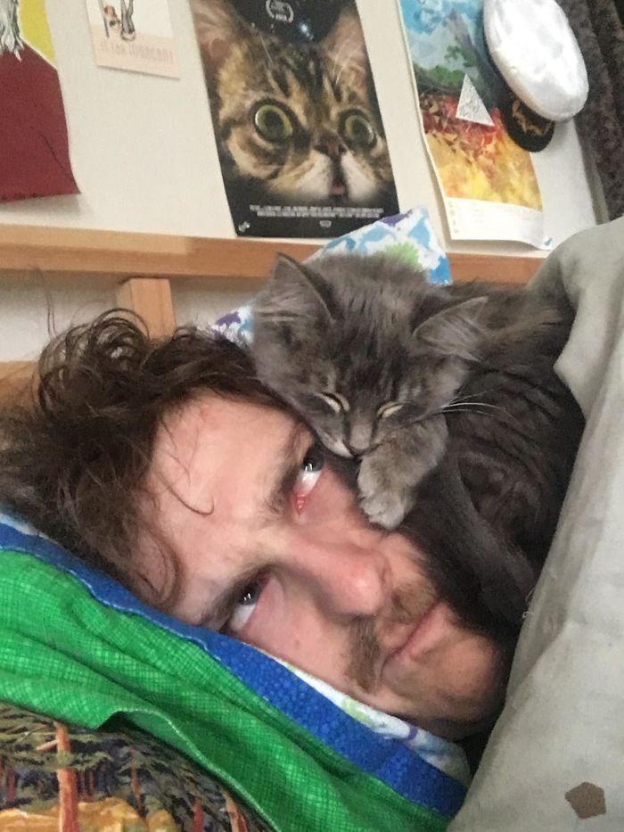 17+ котов, застигнутых врасплох за странным занятием! Часть II