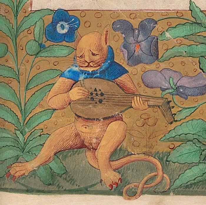 10 + фото, смешных котов Средневековья! рис 10