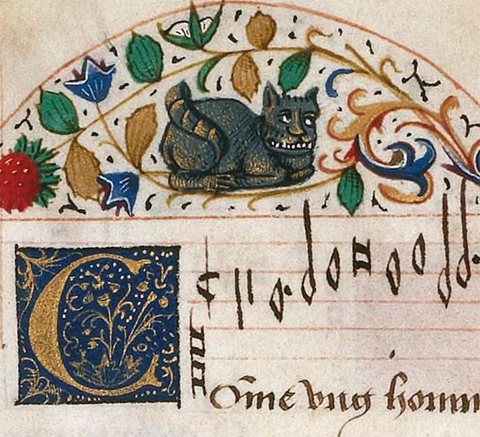 10 + фото, смешных котов Средневековья! рис 11