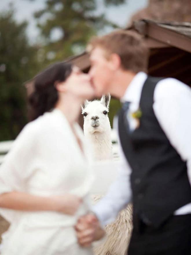 20 случайно испорченных снимков со свадьбы, ставших настоящей фотобомбой! рис 20