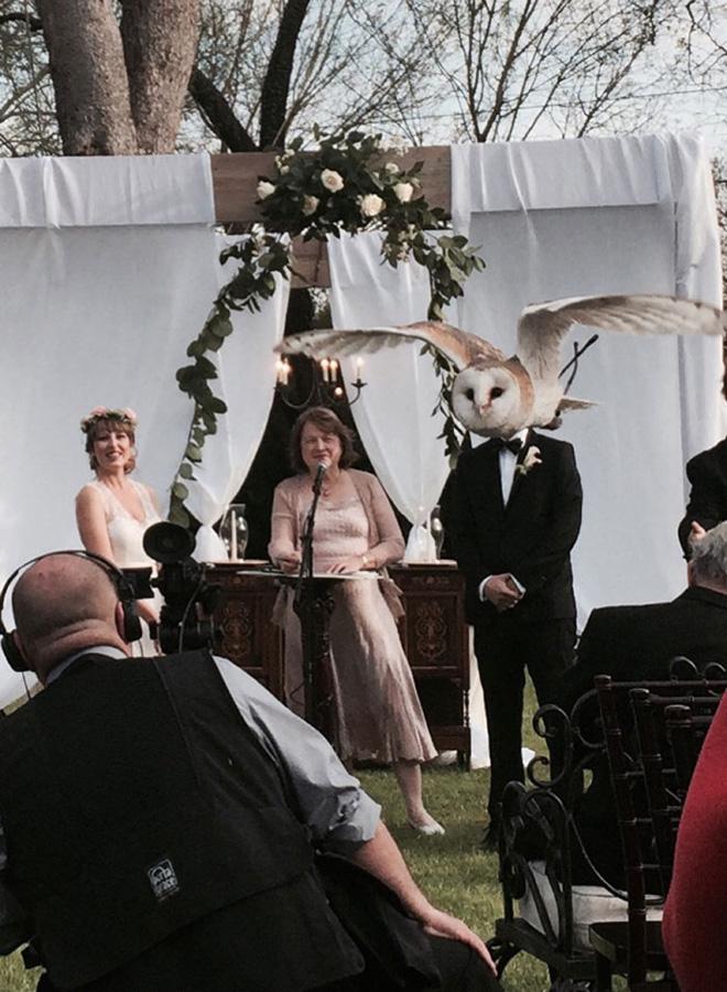 20 случайно испорченных снимков со свадьбы, ставших настоящей фотобомбой! рис 9