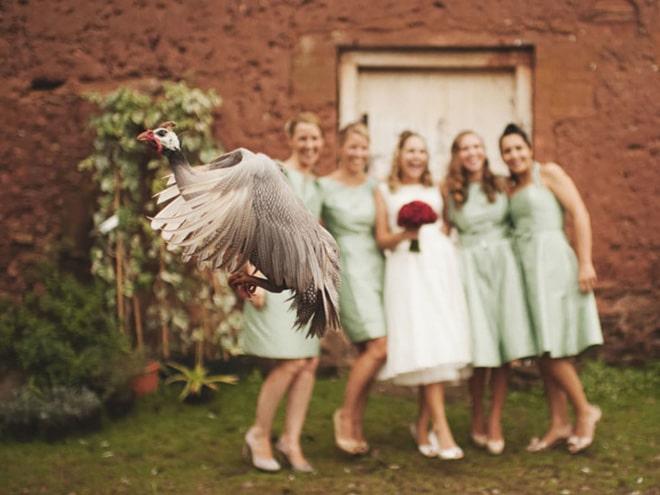 20 случайно испорченных снимков со свадьбы, ставших настоящей фотобомбой! рис 3
