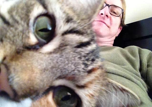 Селфи-кот покоряет сеть крутыми снимками! рис 20