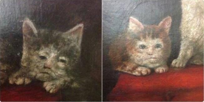 16+ твитов о котах, которые однозначно поднимут вам настроение! 14
