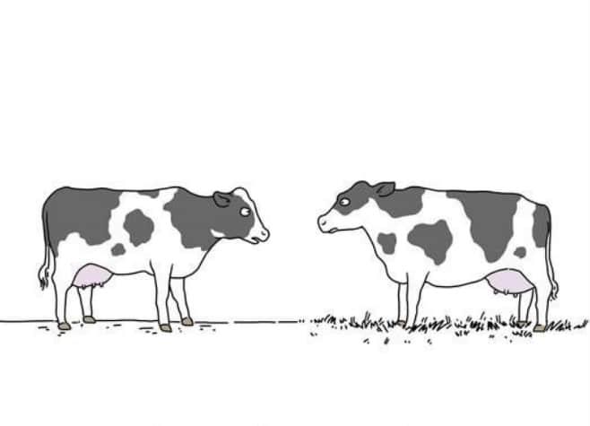 20 комиксов о том, что бы сказали животные, если бы они могли говорить! 8