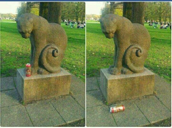 смешные коты 9
