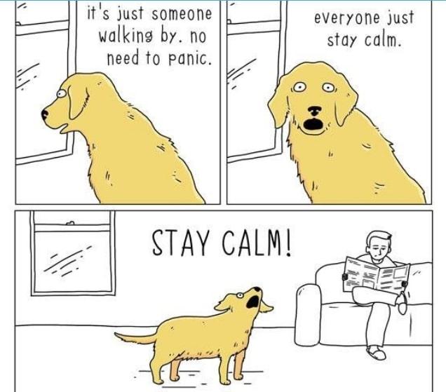 20 комиксов о том, что бы сказали животные, если бы они могли говорить! 13