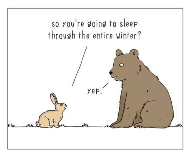 20 комиксов о том, что бы сказали животные, если бы они могли говорить! 12