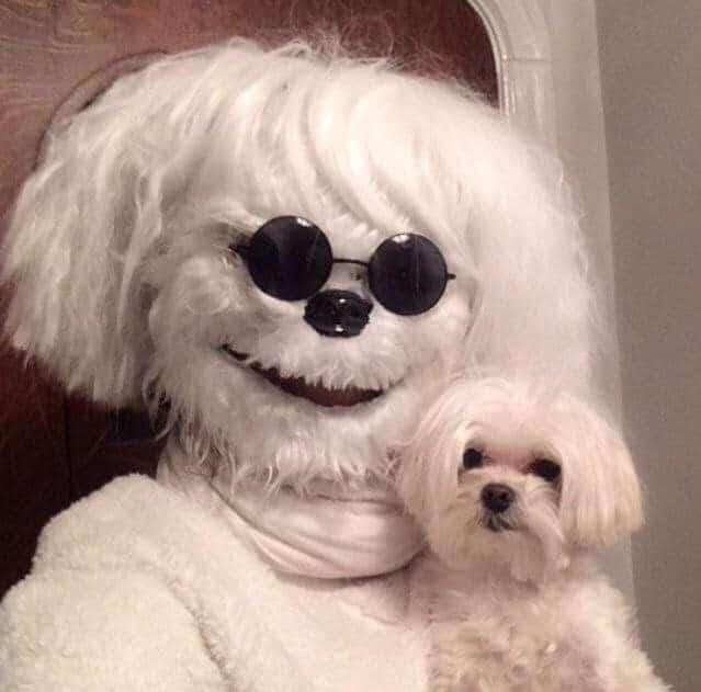 костюм собаки