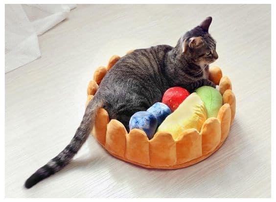 кошка сидит в кроватке