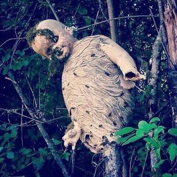кукла на дереве