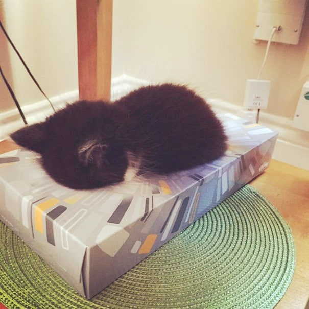 подушка-коробка