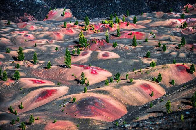 Окрашенные дюны
