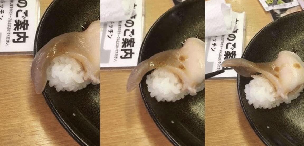 живые суши