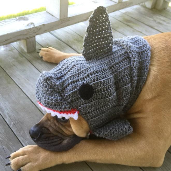 шапка в виде акулы