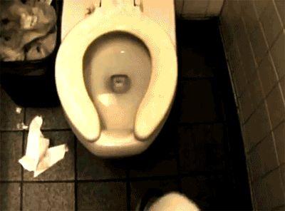страшные картинки - пауки в туалете