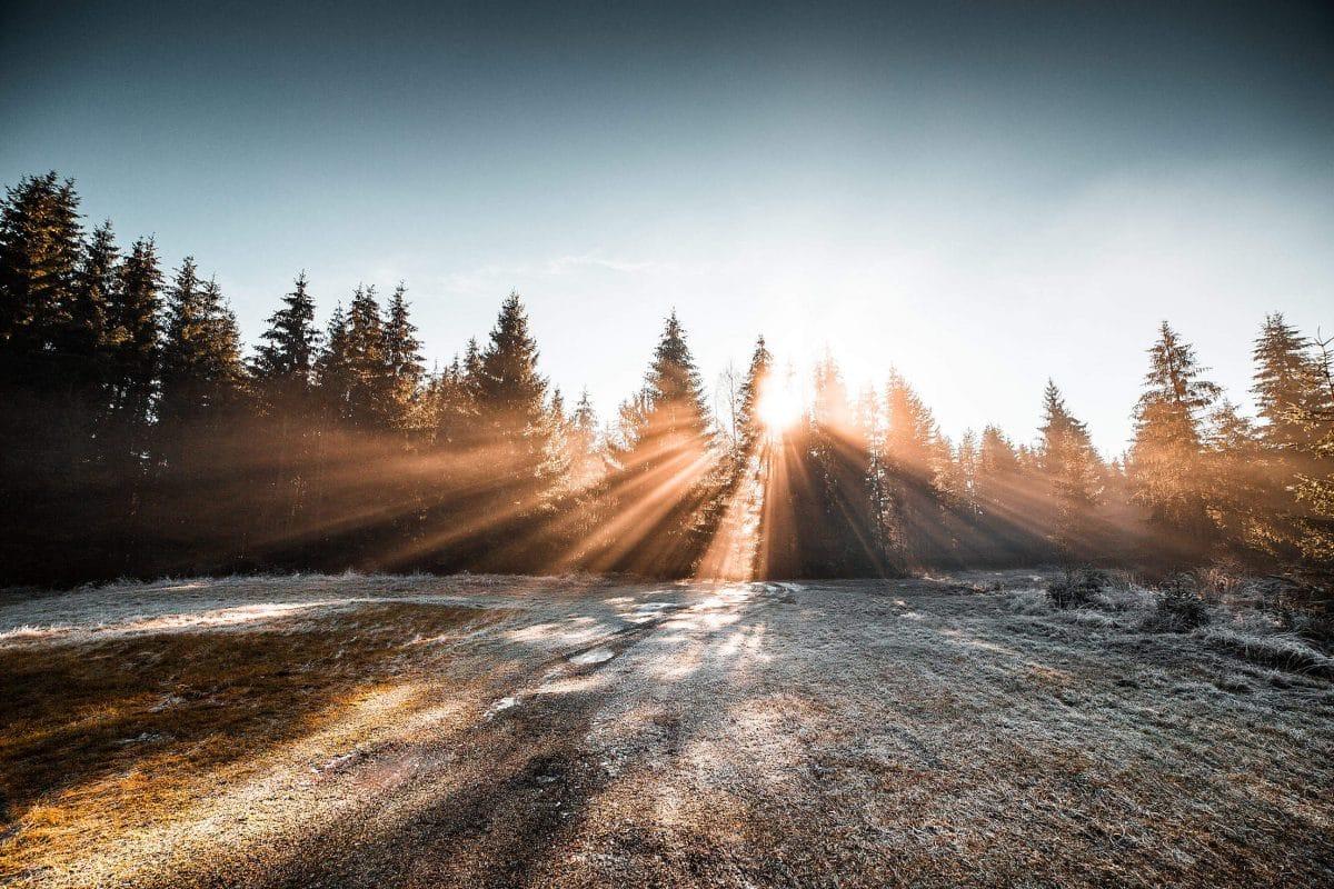 9 чудесных фото, напоминающих о прелестях зимы рис 2