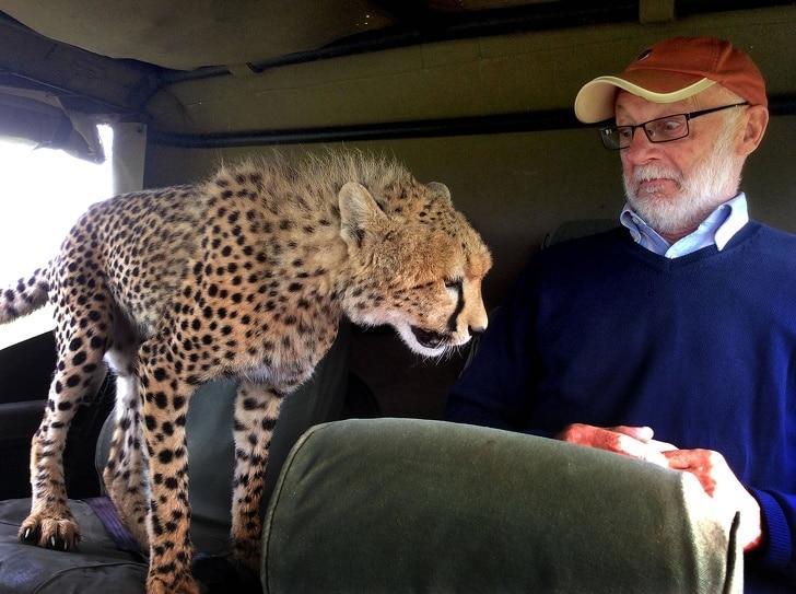 человек и леопард