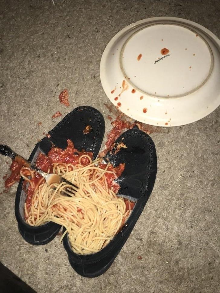 тарелка с едой упала на пол