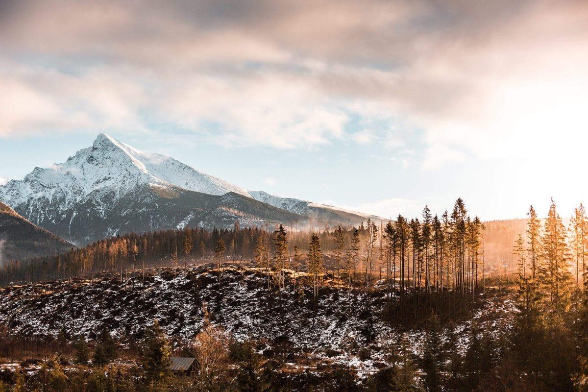 9 чудесных фото, напоминающих о прелестях зимы рис 4