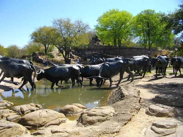 Перегон скота