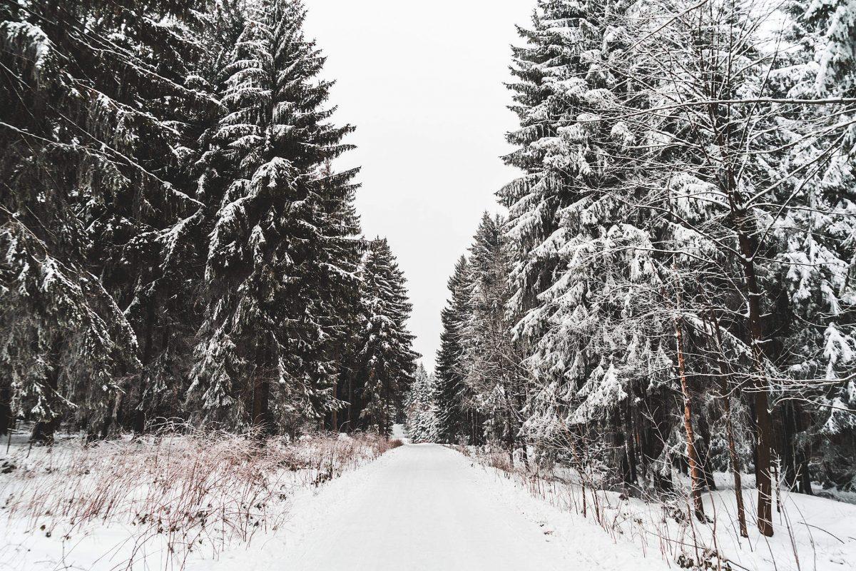 9 чудесных фото, напоминающих о прелестях зимы рис 6