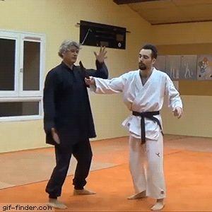 мужчина и учитель кунг-фу