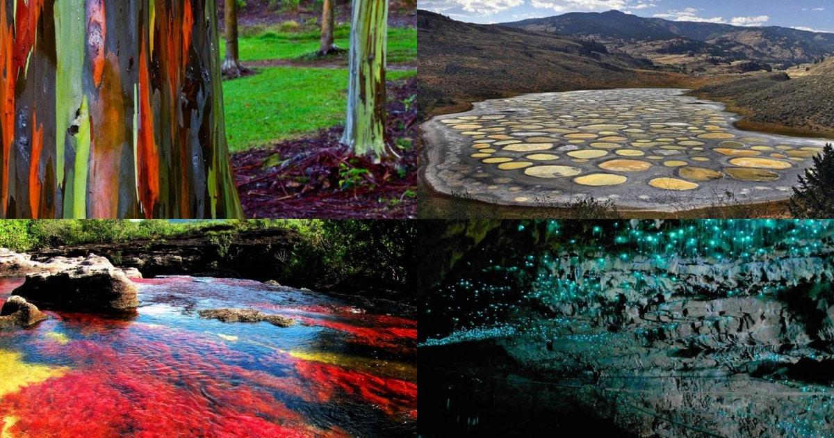 imgonline-com-ua-Collage-R1u84mXPut