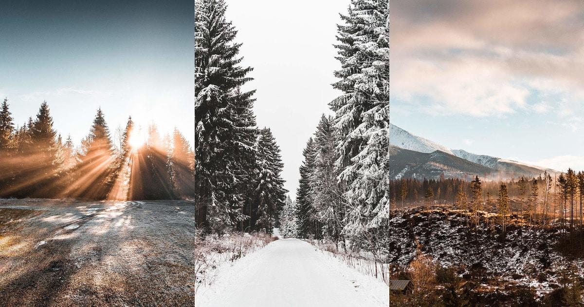 imgonline-com-ua-Collage-XfnhvRKoZg