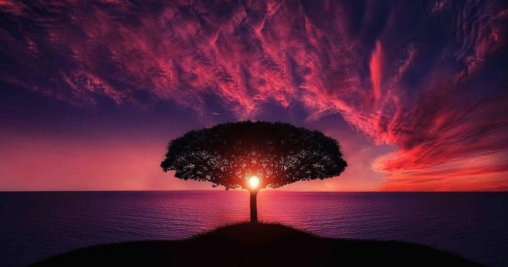 Величие в мелочах: 9 причин поверить в безмерность силы природы