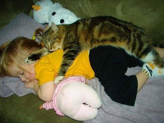 девочка и кошка спят