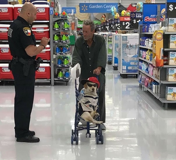 хозяин с собакой в супермаркете