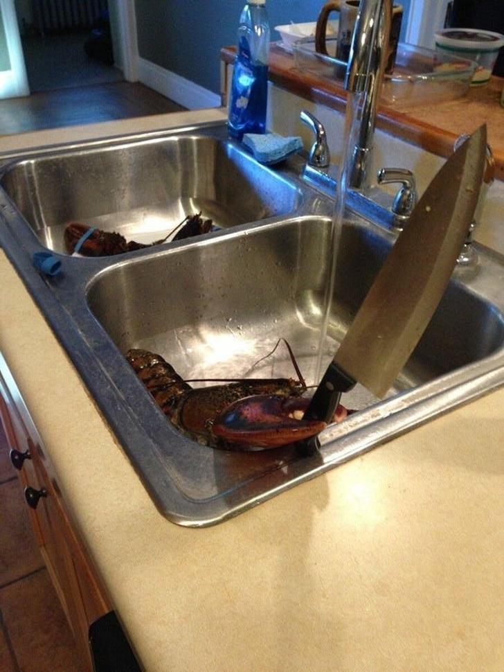 лобстер с ножом в клешне