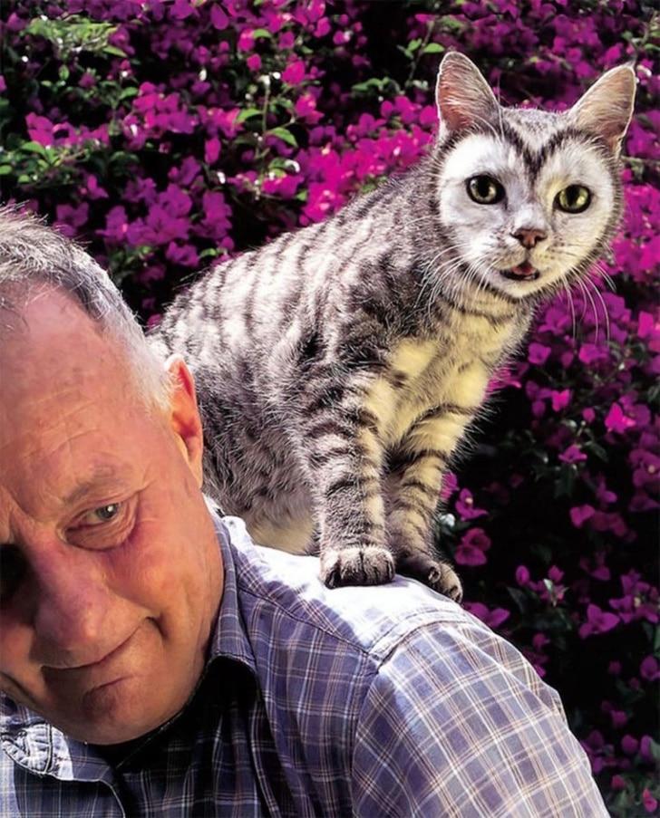 мужчина с котом на плече