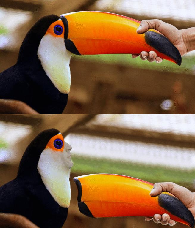 игрушечный тукан