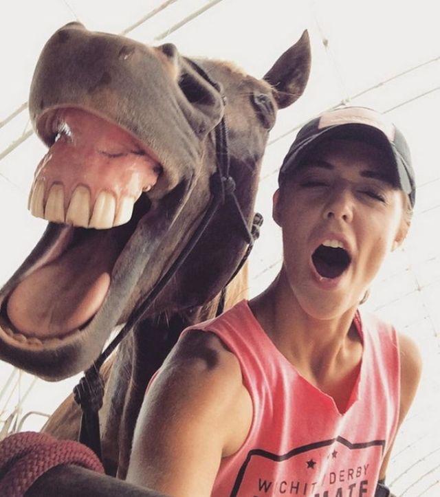 зевающия лошадь и девушка