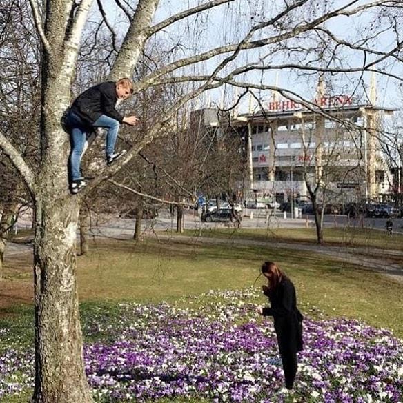 парень на дереве