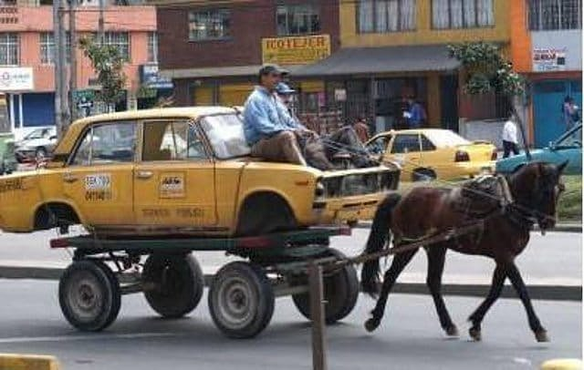 лошадь запряженная в машину