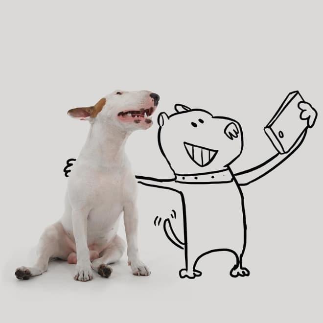 питбуль и нарисованная собака