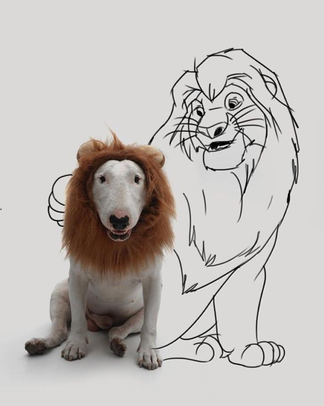 питбуль рядом с нарисованным львом
