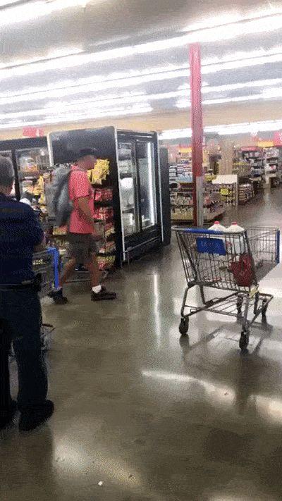 собака везет тележку в супермаркете