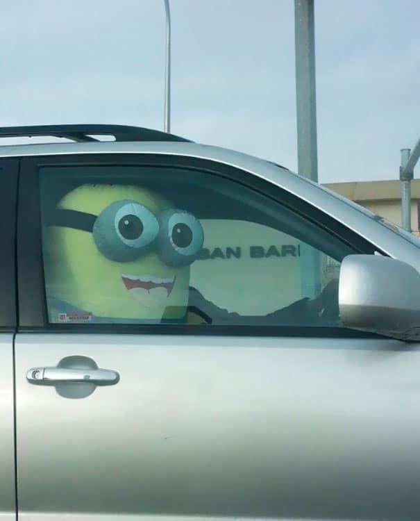 миньон в автомобиле