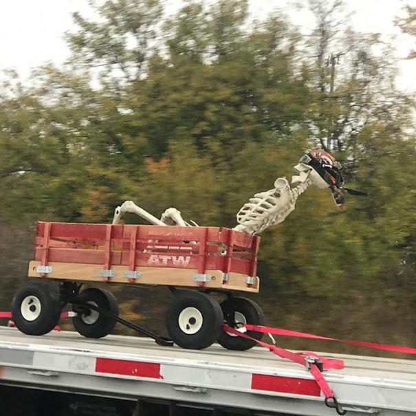 скелет едет на машине